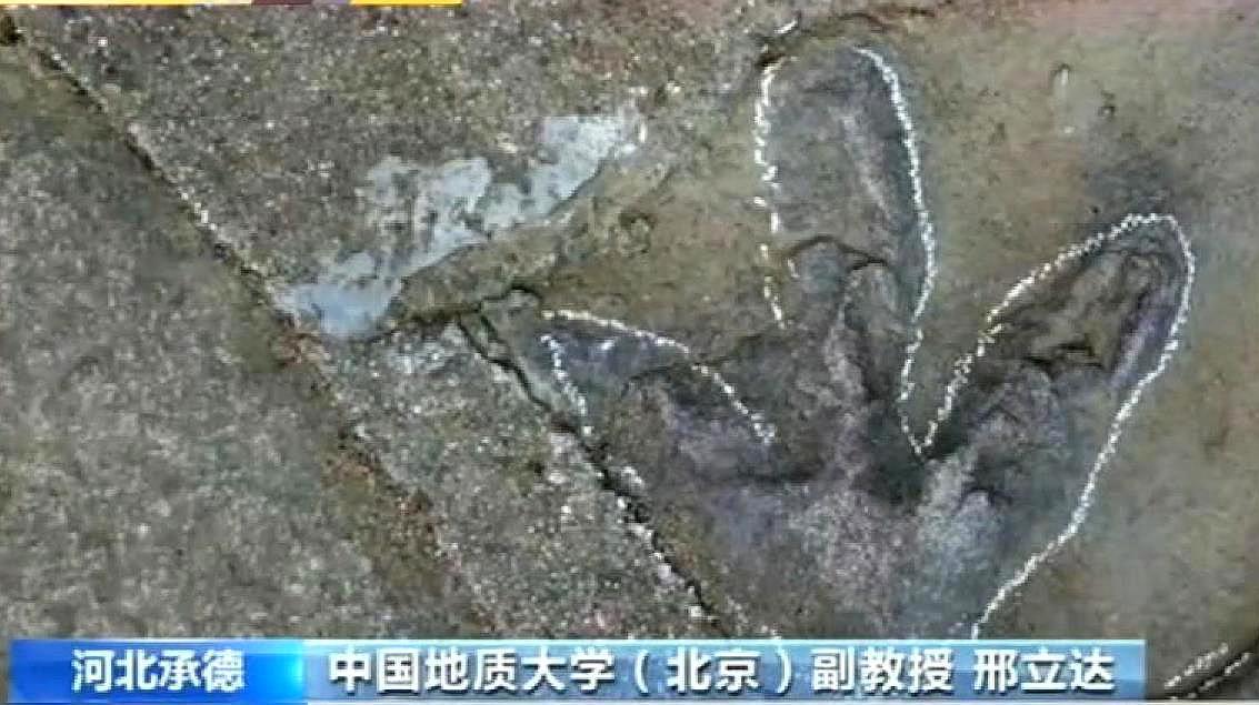 河北承德避暑山庄发现大量侏罗纪时期的恐龙足迹