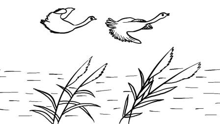 简笔画芦苇,仙鹤,小河,一个姑娘, 一个真实的故事, 趣味创意简笔画