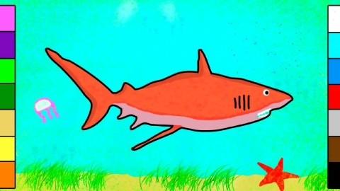 趣味儿童卡通绘画《大鲨鱼》图片