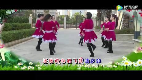 广场舞《苗乡侗寨请你来》,民族舞圈圈舞