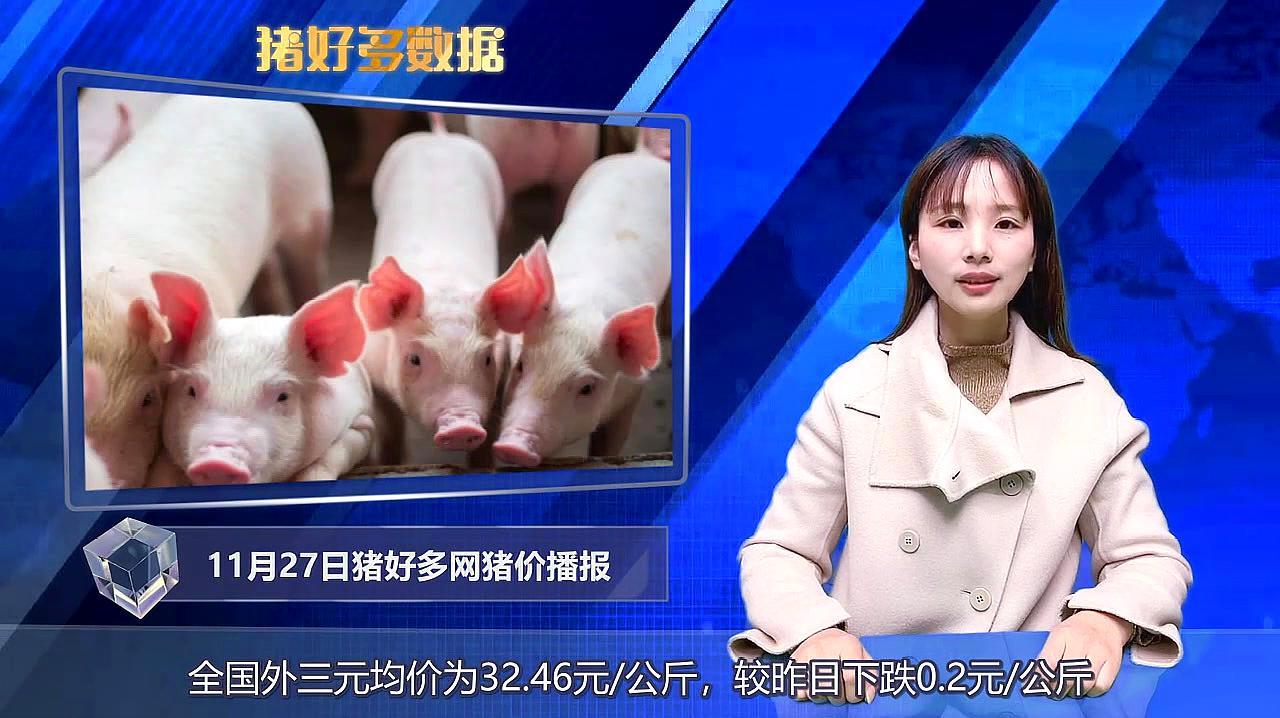 猪好多网猪价行情播报:肉类供给有保障,年底前猪价还能上涨吗?