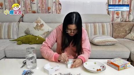 日本食玩之熊猫便当,好吃又好玩DIY