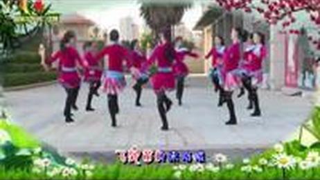 杨丽萍广场舞《 苗乡侗寨请你来》( 民族舞圈圈舞) 含背面动作分解教学 广场舞视频大