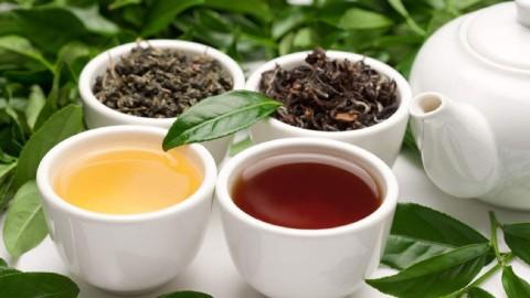 都说喝茶减肥,但你知道哪种茶的减肥效果最好吗?