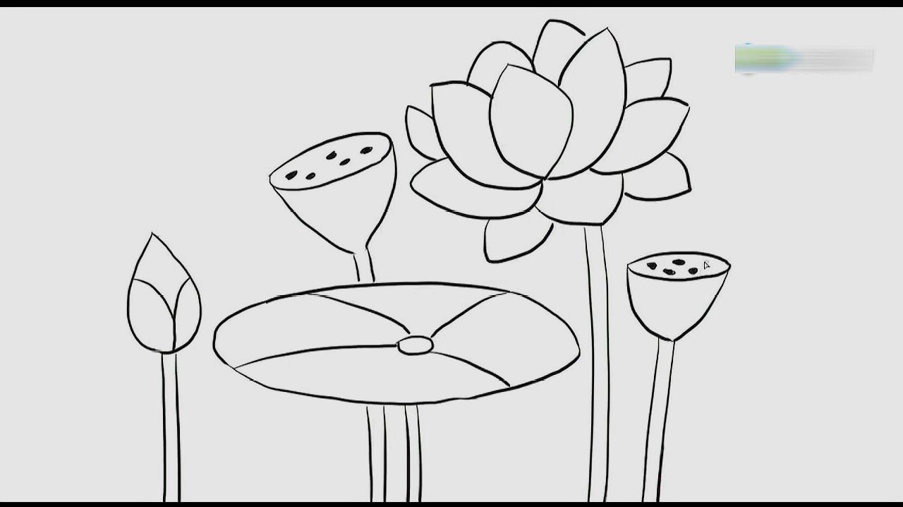 01:14  来源:好看视频-荷花的简笔画怎样画 5春日荷塘:先画出中间的