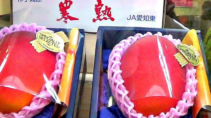 20万一颗的天价水果,日本只有皇室才能享用,普通人想都不敢想