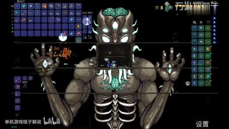 「泰拉瑞亚」电脑版,专家模式「三十三」打月总