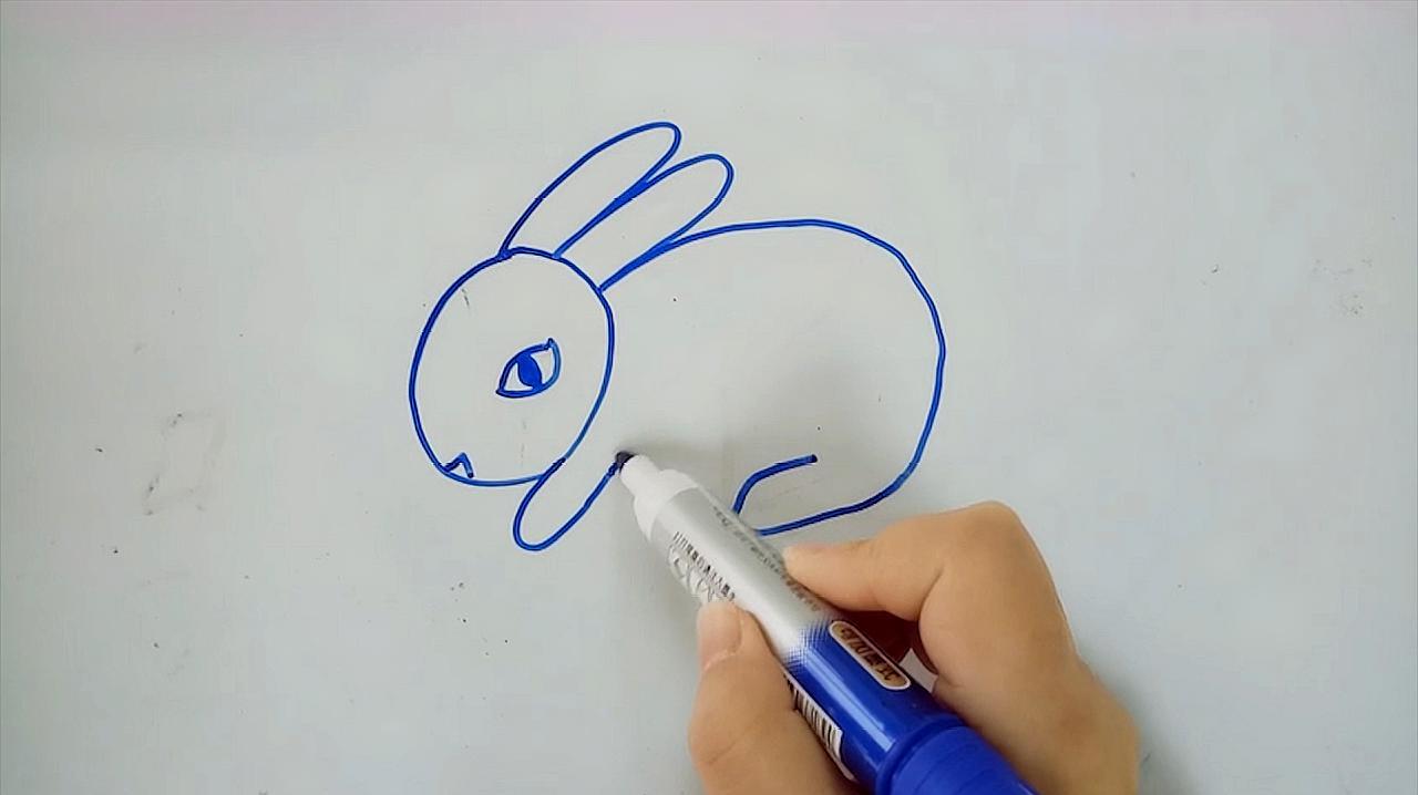 看看_想画一只小白兔,一起来看看怎么画吧!
