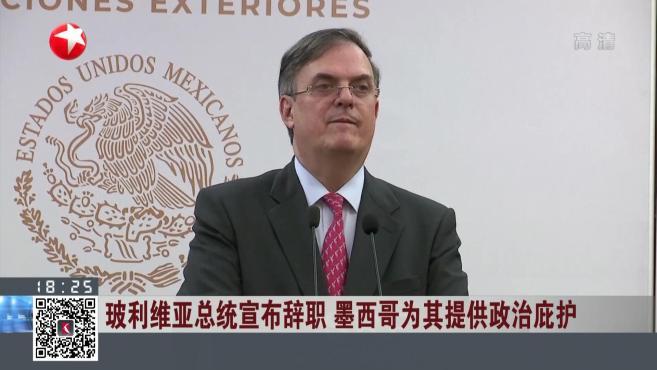 玻利维亚总统宣布辞职 墨西哥为其提供政治庇护