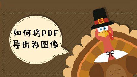 如何将PDF导出为图像?