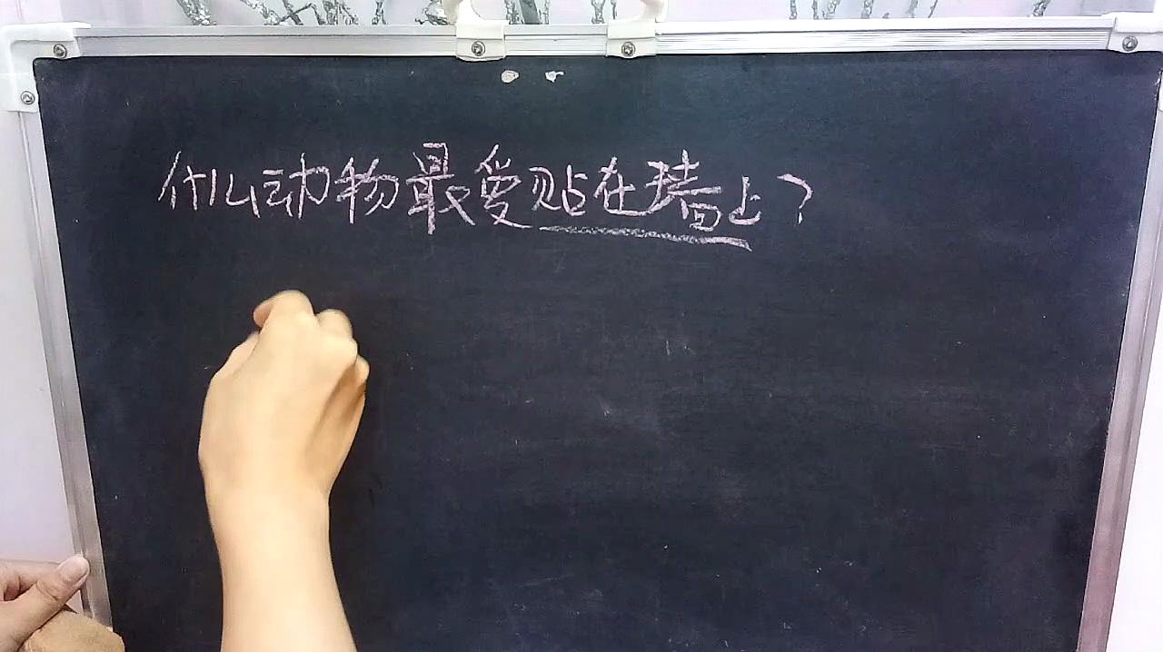 老师出这题绝了:什么动物最爱贴在墙上?超级有意思的一个答案