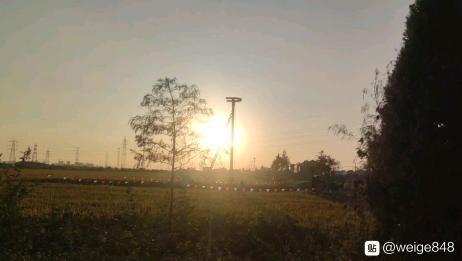 黄桥高铁吧|野屋村东养猪场路西电力部门施工现场,应该是前期准备了