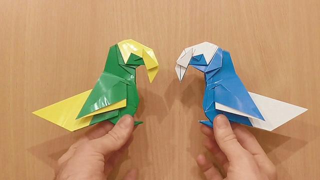 手工折纸教程,漂亮鹦鹉的折纸方法,步骤2-2