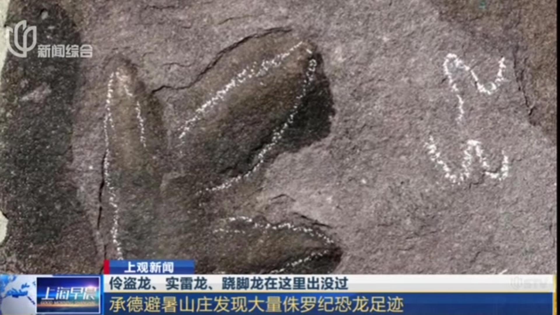 伶盗龙、实雷龙、跷脚龙在这里出没过:承德避暑山庄发现大量侏罗纪恐龙足迹