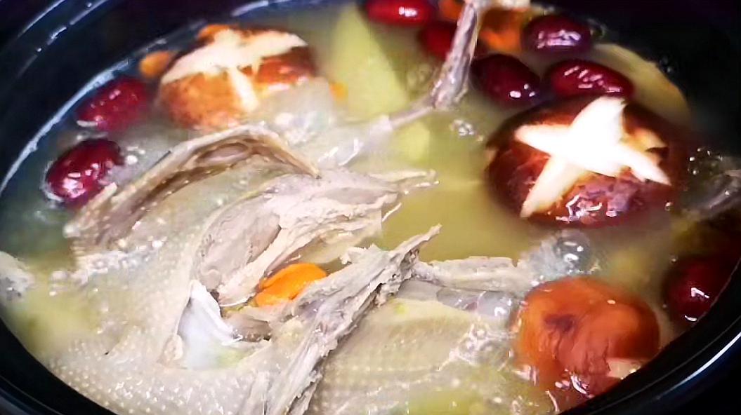 营养汤炖最猴子最漂亮的鸽子怎么画图片