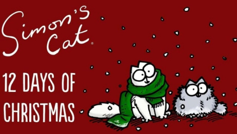 网红喵星人的圣诞假期,蠢萌可爱到犯规