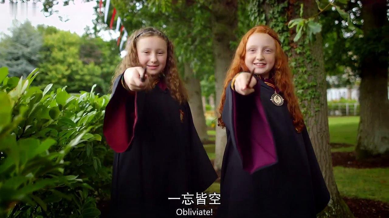 哈利波特书中的魔杖确有其事,真有魔杖制作师世世代代做魔杖