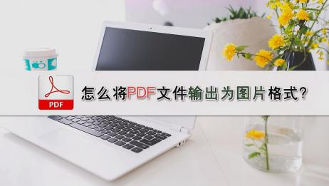 怎么将PDF文件输出为图片格式?—江下办公