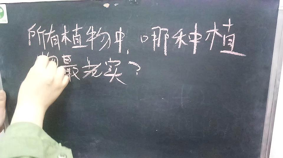 老师出了一道题:所有植物中,哪种植物最老实?都来猜一下