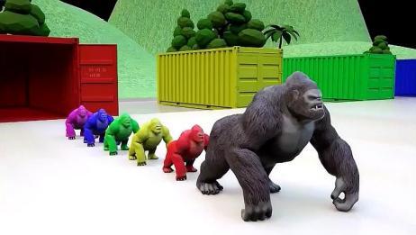 动物们倒退着走进了彩色的集装箱,真好玩