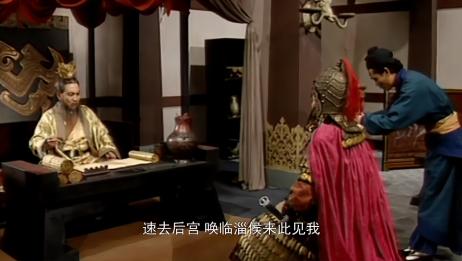 曹丕将杨修拿下,又有贾诩相助,终于战胜曹植成为世子!