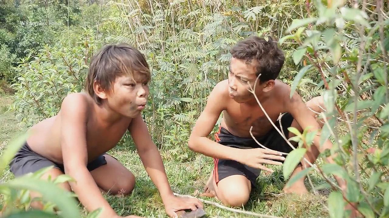 两个小孩子在野外放牛 在大树上摘到一种果子吃得津津有味