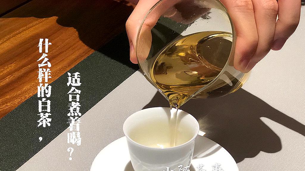 什么样的白茶适合煮着喝?是新白茶还是老白茶?视频为你一一解答