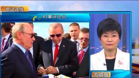 苏晓辉:俄罗斯力求管控叙利亚与土耳其分歧,且不会与土分道扬镳