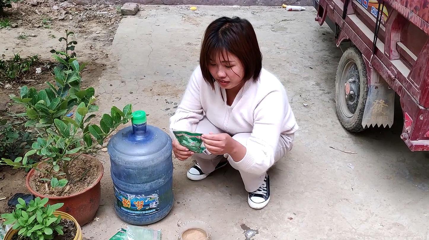 农村美女给你讲解睡莲种植方法,简单又实用,赶快收藏吧
