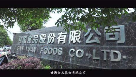 甘源食品宣传片