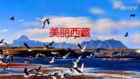 美丽西藏天路长图