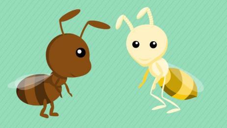 为什么白蚁和蚂蚁是亲戚?