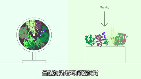 04:13 未来家庭农场:采用旋转水培法持续产出新鲜的果实蔬菜