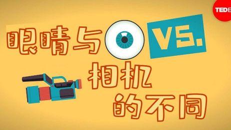 眼睛与相机的不同[TEDEd]