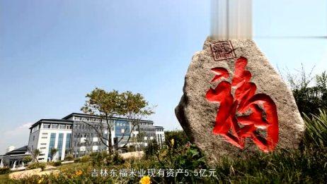 东福米业宣传片