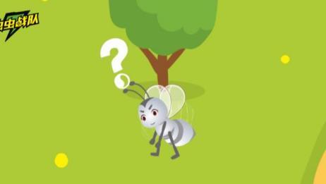 白蚁群中的生殖蚁为什么会长翅膀