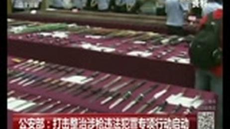 [中国新闻]公安部:打击整治涉枪违法犯罪专项行动启动