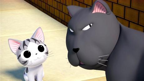 《甜甜私房猫第3季》合集速看