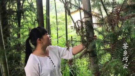 农村姑娘心灵手巧,一根竹子自制扫院神器,农村很常见