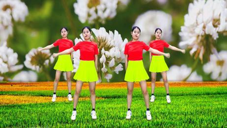 经典广场舞《花开的时候你就来看我》,花开见花不见你,伤感动人