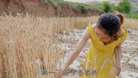 甘肃小麦熟了,农村姑娘用麦秆编了一个神秘东西?很多人没见过!