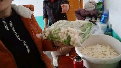 农村的野菜一般人没有见过