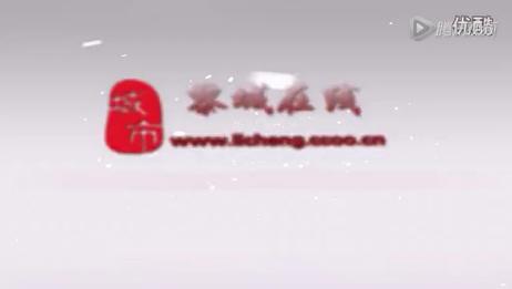黎城县综合门户信息网站宣传片