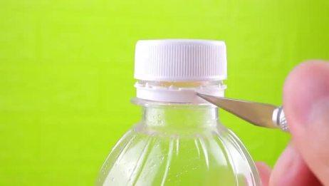 大米容易招虫子?教你用饮料瓶收纳大米,很多人都想不到!