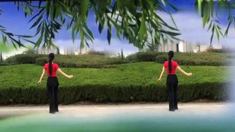 杨丽原创广场舞《带你潇洒带你嗨》入门现代舞附教学