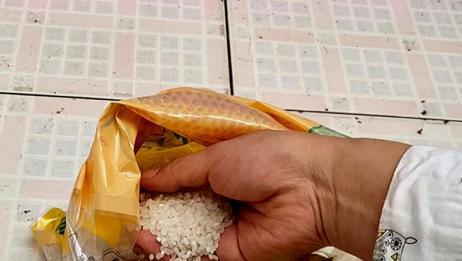 抓一把大米放保温杯里,轻松去除水垢,网友:长见识了