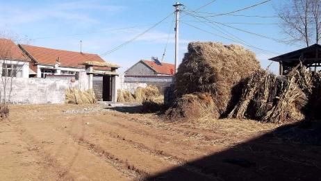 今日立春,农村人特别关注这个节气,这时候一定要保养好身体!