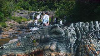 《巨鳄岛》空难逃生又遇巨鳄袭击,四周危机四伏,该如何脱险