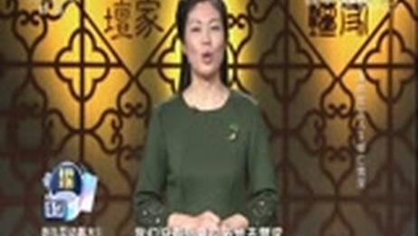 [百家讲坛]清明思故人 3 《内顾诗》中的思念