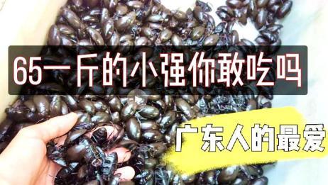 广州菜市场还卖这种虫子?很多人不敢吃!